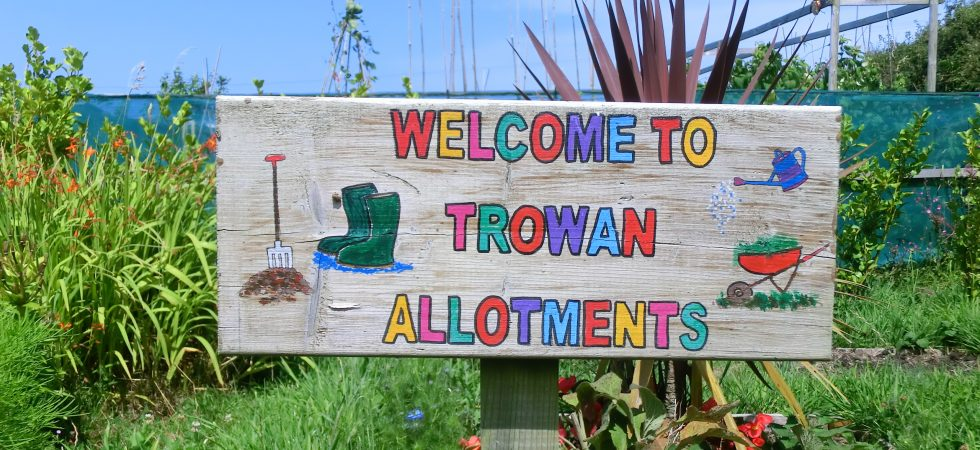 Welcome to Trowan Allotments.