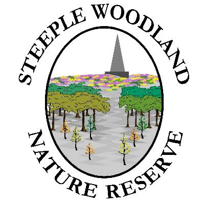 Steeple Woodland Project